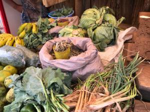groenten en fruit uit de kas